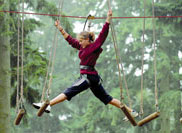 Go Ape high level ropes